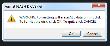 Windows warns you about erasing the existing files during the drive formatting